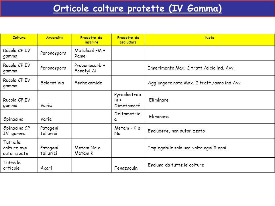 Orticole colture protette (IV Gamma)