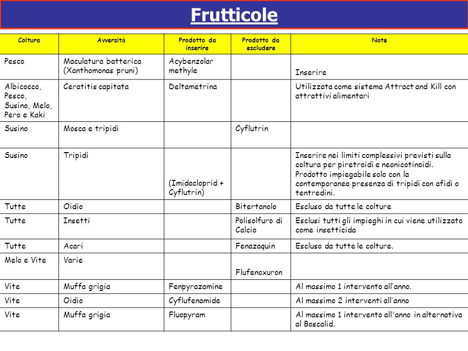 Frutticole Pesco Maculatura batterica (Xanthomonas pruni)