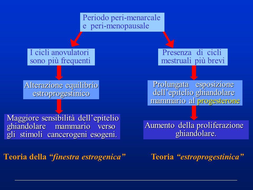 Teoria della finestra estrogenica
