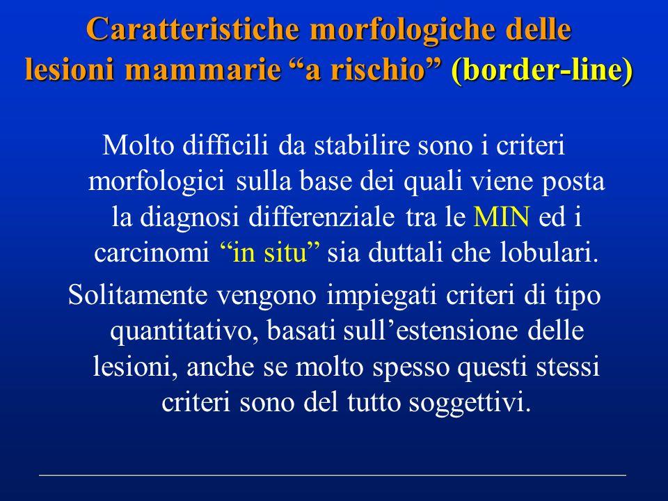 Caratteristiche morfologiche delle lesioni mammarie a rischio (border-line)
