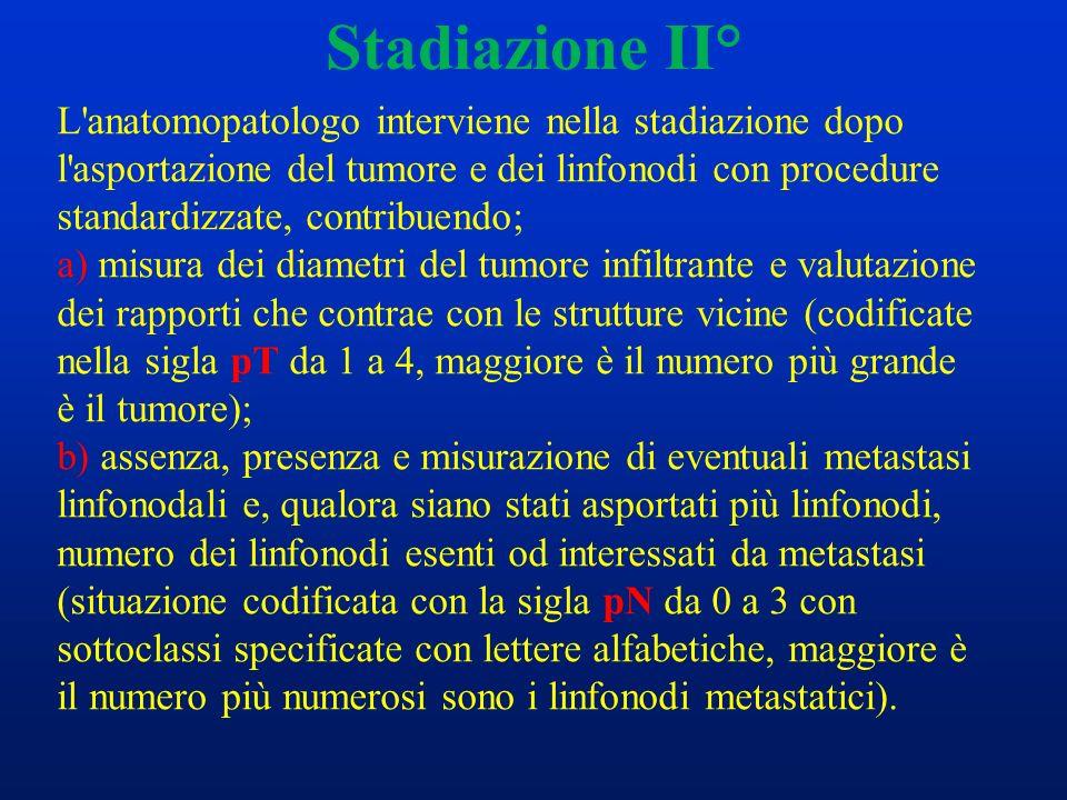 Stadiazione II°