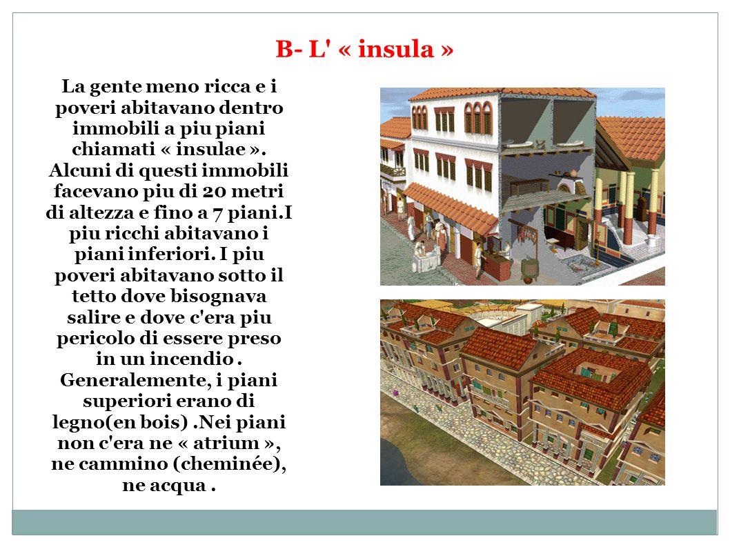 B- L « insula »