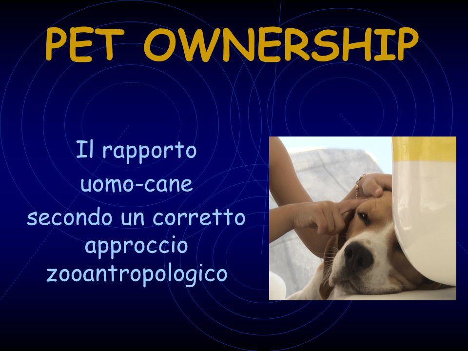 Il rapporto uomo-cane secondo un corretto approccio zooantropologico