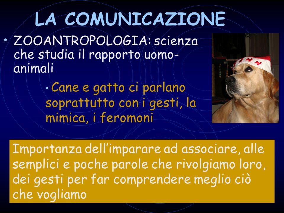 LA COMUNICAZIONE ZOOANTROPOLOGIA: scienza che studia il rapporto uomo-animali.