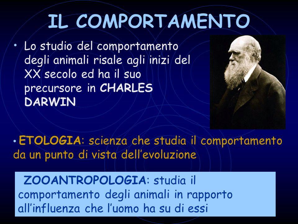 IL COMPORTAMENTO Lo studio del comportamento degli animali risale agli inizi del XX secolo ed ha il suo precursore in CHARLES DARWIN.