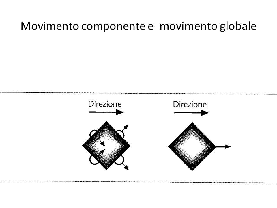 Movimento componente e movimento globale