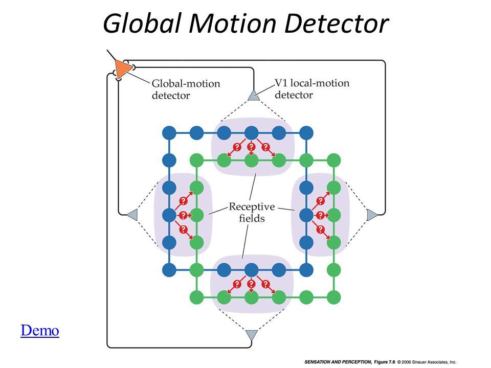 Global Motion Detector