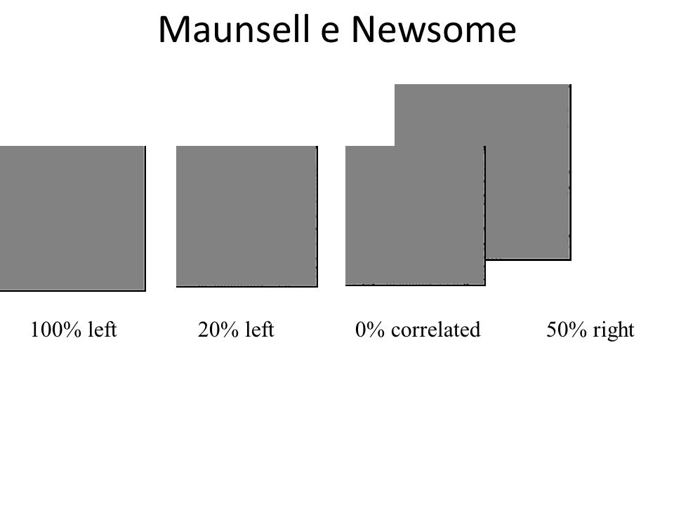 Maunsell e Newsome 100% left 20% left 0% correlated 50% right