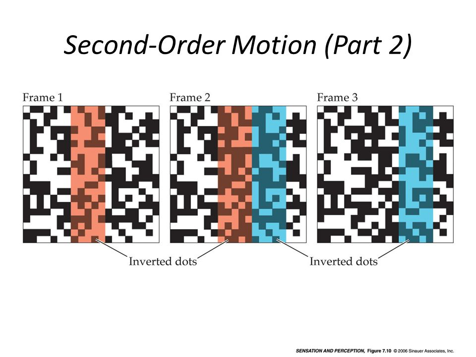 Second-Order Motion (Part 2)