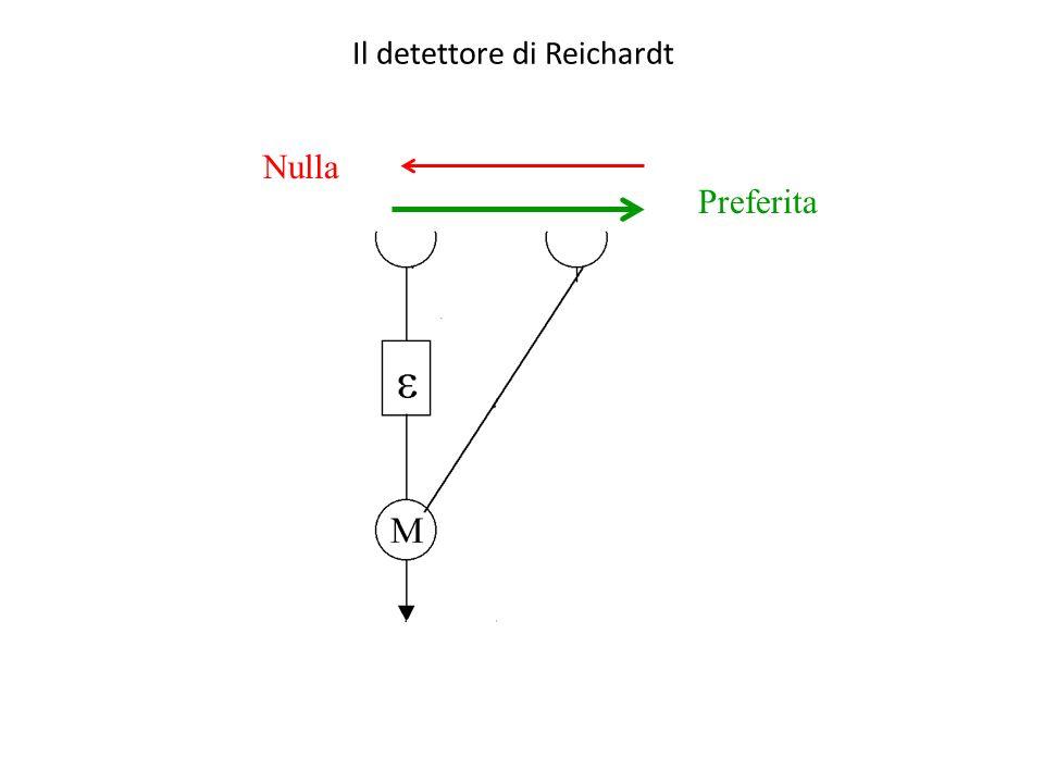 Il detettore di Reichardt