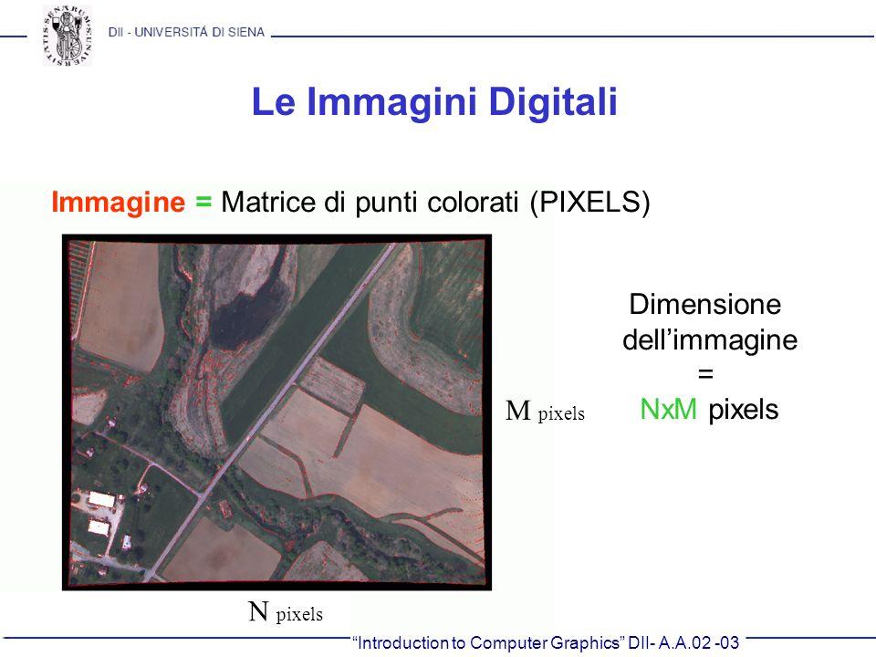 Le Immagini Digitali Immagine = Matrice di punti colorati (PIXELS)
