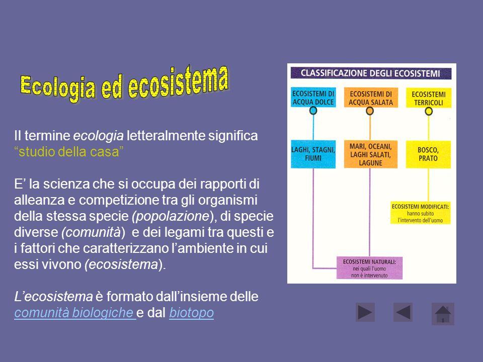 Ecologia ed ecosistema