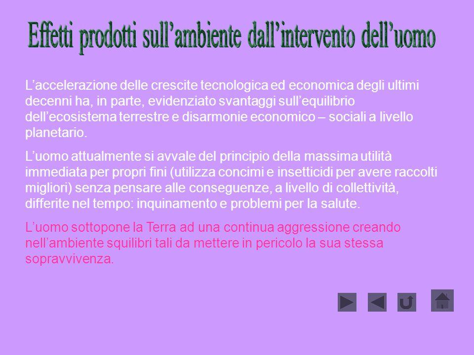 Effetti prodotti sull'ambiente dall'intervento dell'uomo