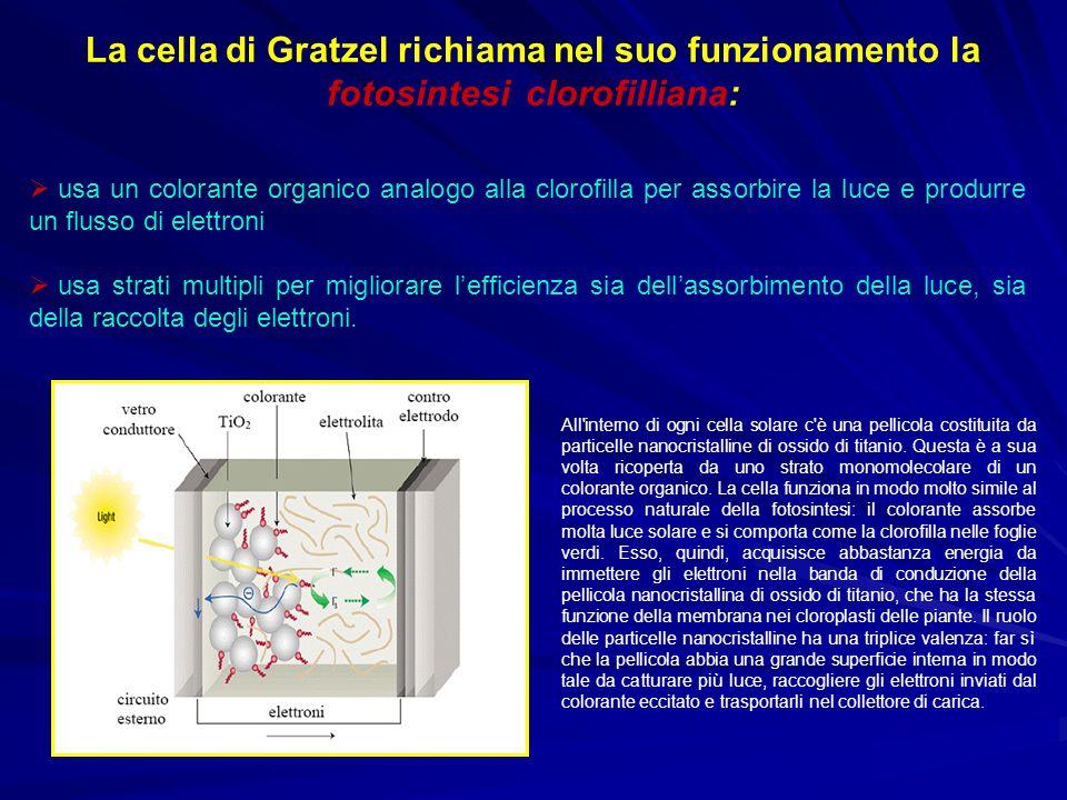 La cella di Gratzel richiama nel suo funzionamento la fotosintesi clorofilliana: