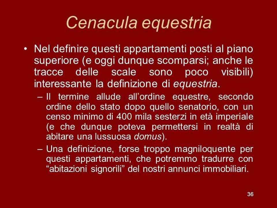 Cenacula equestria