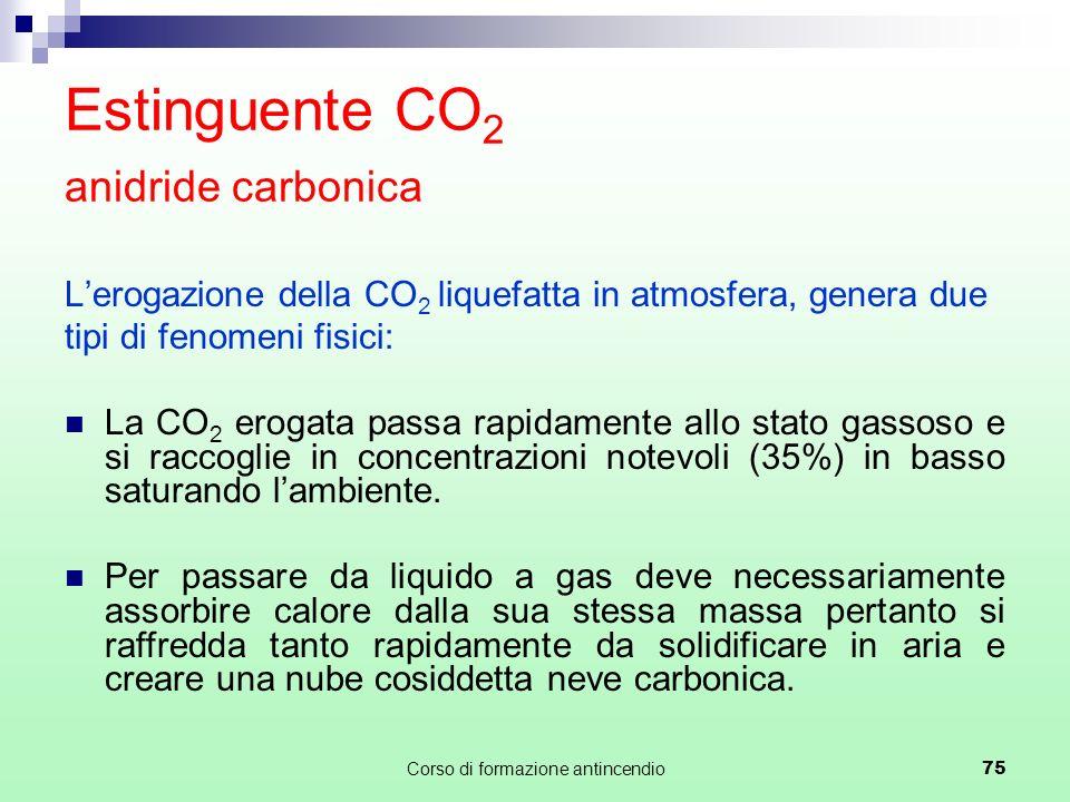 Estinguente CO2 anidride carbonica
