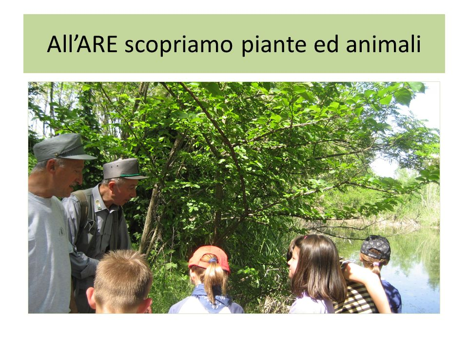 All'ARE scopriamo piante ed animali
