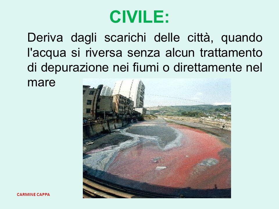 CIVILE: Deriva dagli scarichi delle città, quando l acqua si riversa senza alcun trattamento di depurazione nei fiumi o direttamente nel mare.