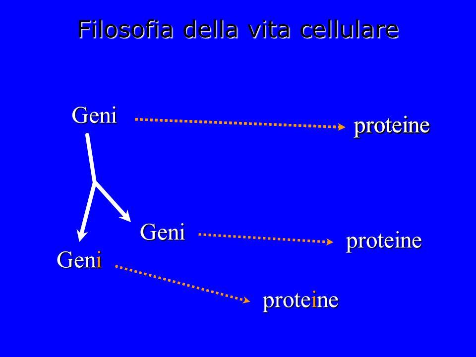 Filosofia della vita cellulare