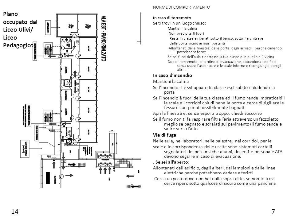 14 7 Piano occupato dal Liceo Ulivi/ Liceo Pedagogico