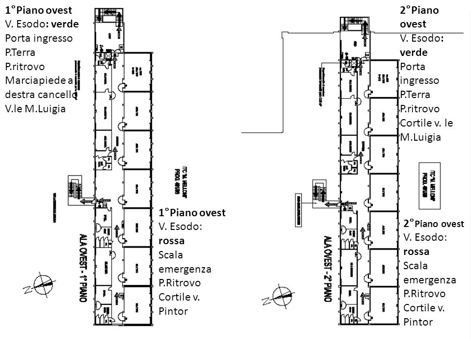 1°Piano ovest V. Esodo: verde. Porta ingresso P.Terra. P.ritrovo. Marciapiede a destra cancello V.le M.Luigia.