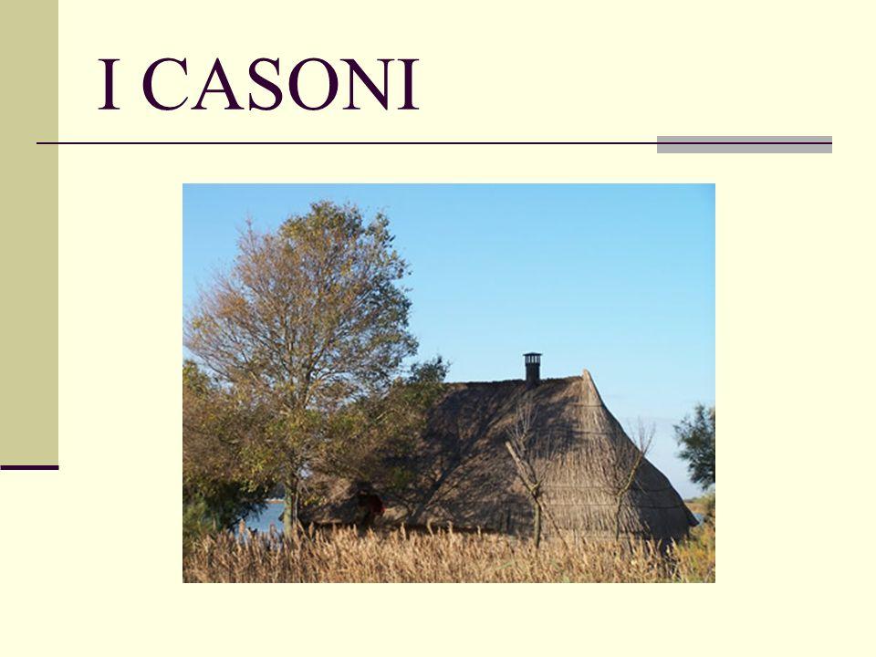 I CASONI