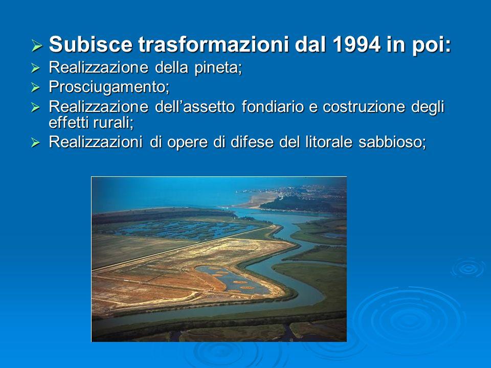 Subisce trasformazioni dal 1994 in poi: