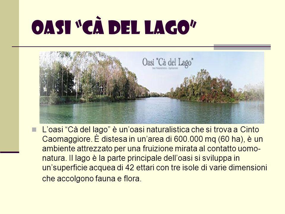 Oasi Cà del lago