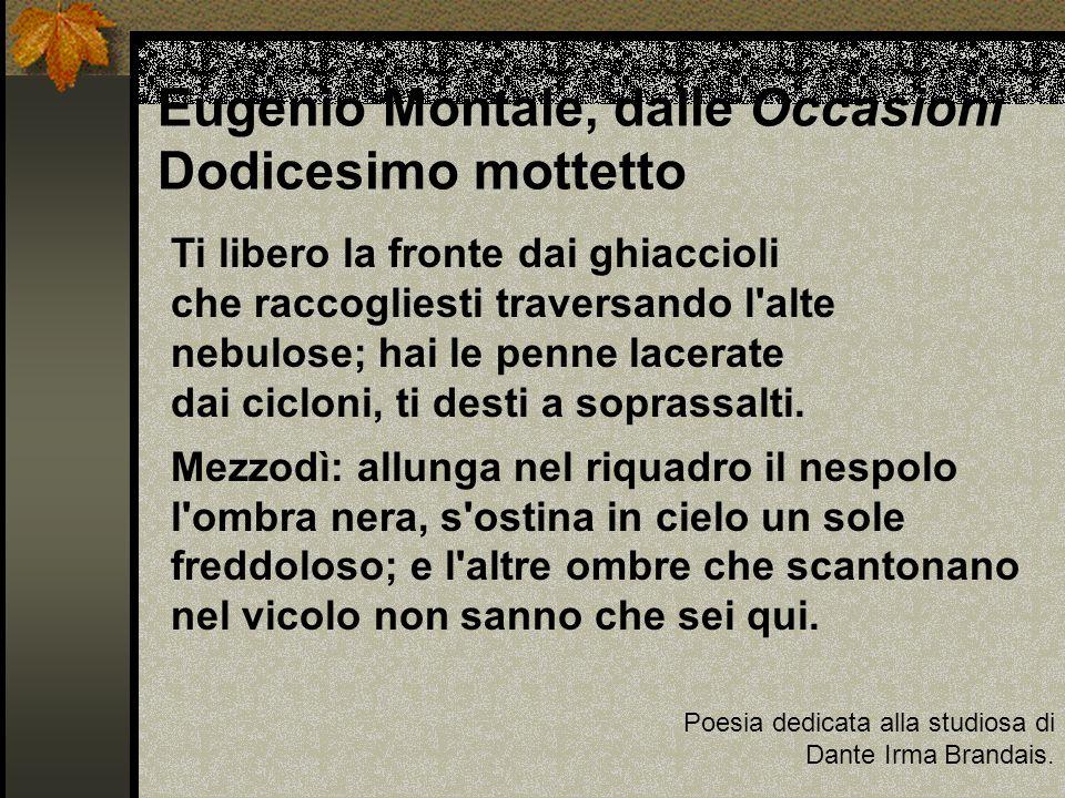 Eugenio Montale, dalle Occasioni Dodicesimo mottetto