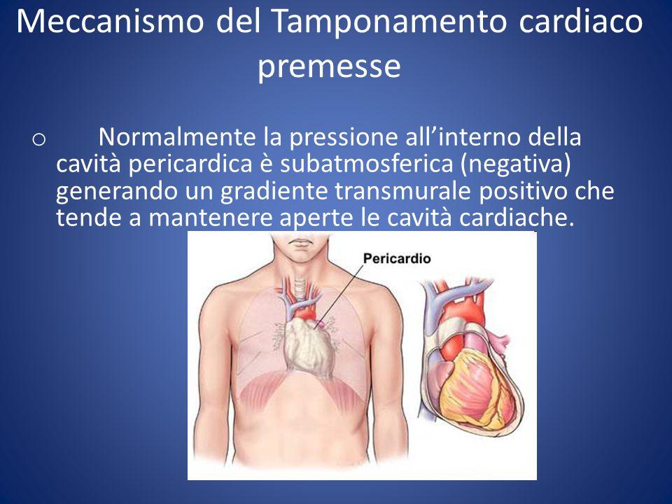 Meccanismo del Tamponamento cardiaco premesse