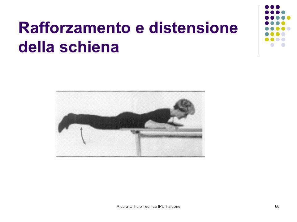 Rafforzamento e distensione della schiena