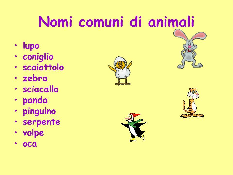Nomi comuni di animali lupo coniglio scoiattolo zebra sciacallo panda
