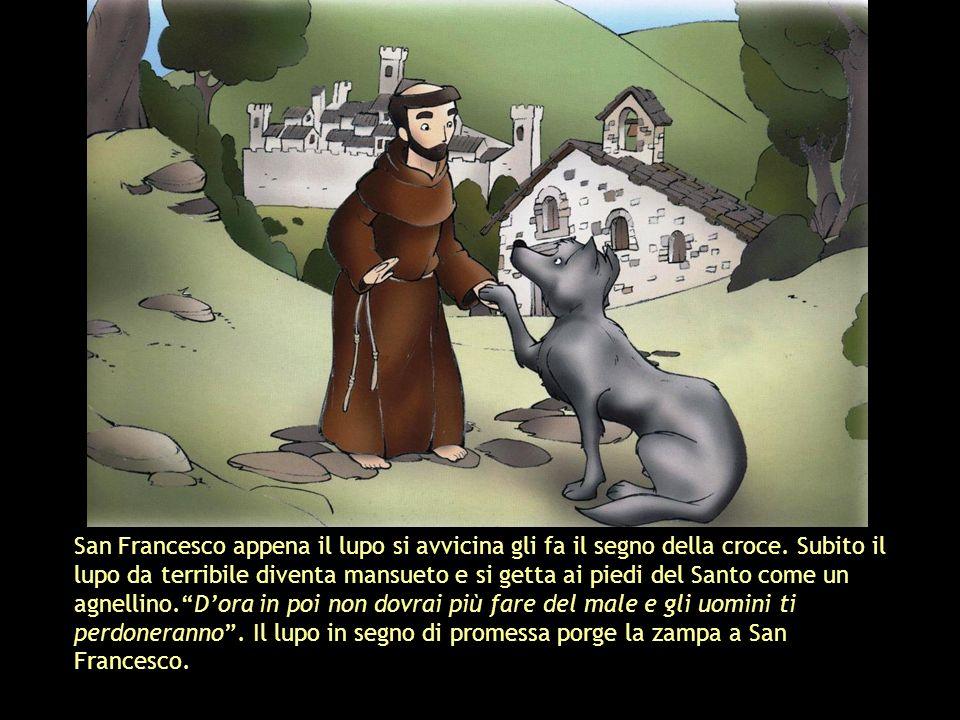 San Francesco appena il lupo si avvicina gli fa il segno della croce