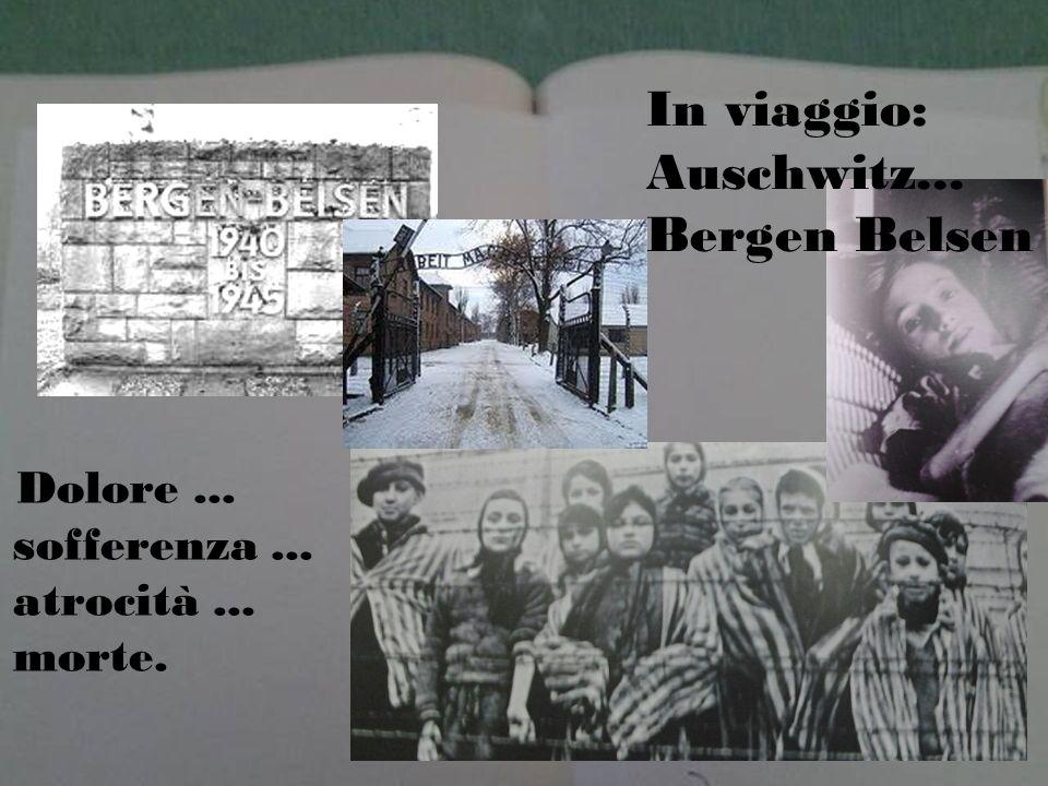 In viaggio: Auschwitz... Bergen Belsen