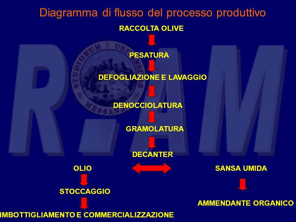 Diagramma di flusso del processo produttivo