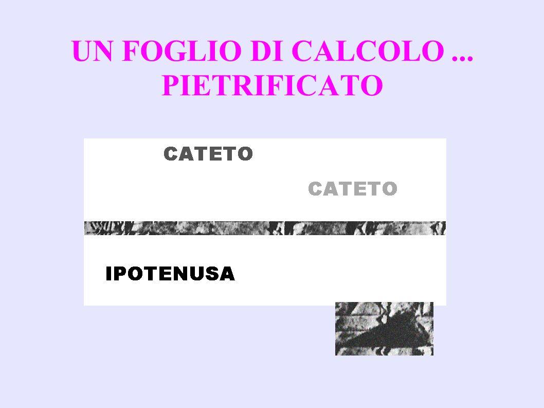 UN FOGLIO DI CALCOLO ... PIETRIFICATO