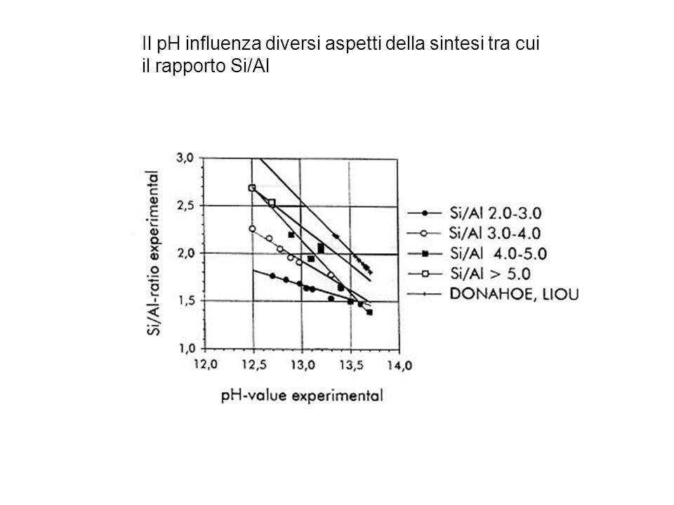 Il pH influenza diversi aspetti della sintesi tra cui