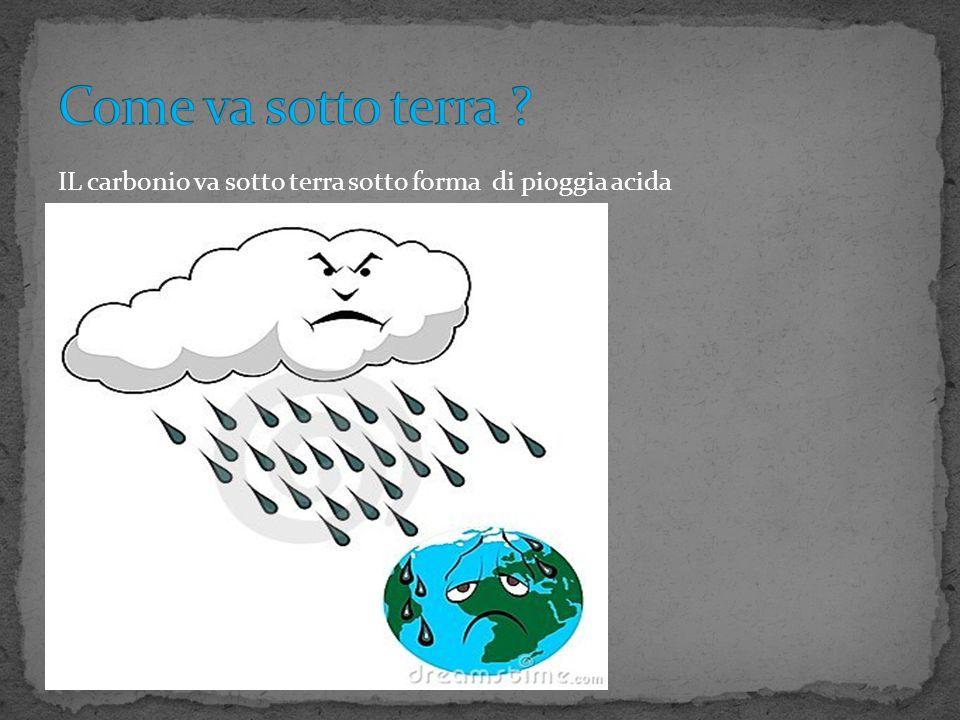 Come va sotto terra IL carbonio va sotto terra sotto forma di pioggia acida