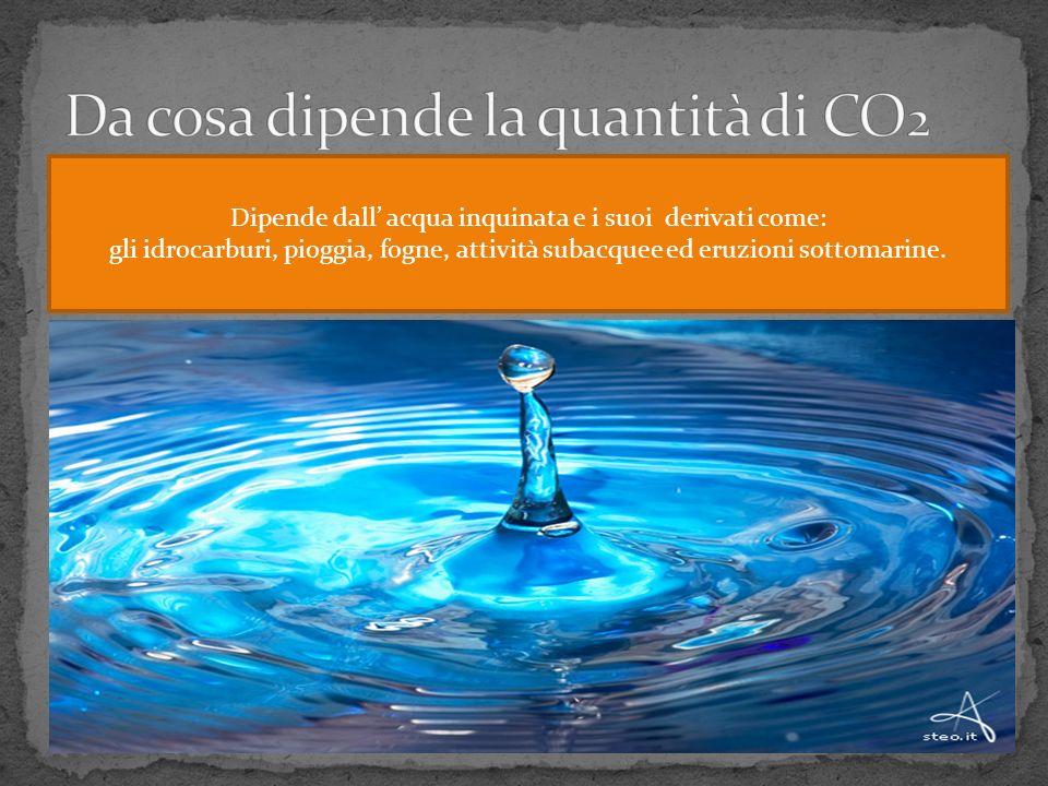 Da cosa dipende la quantità di CO2