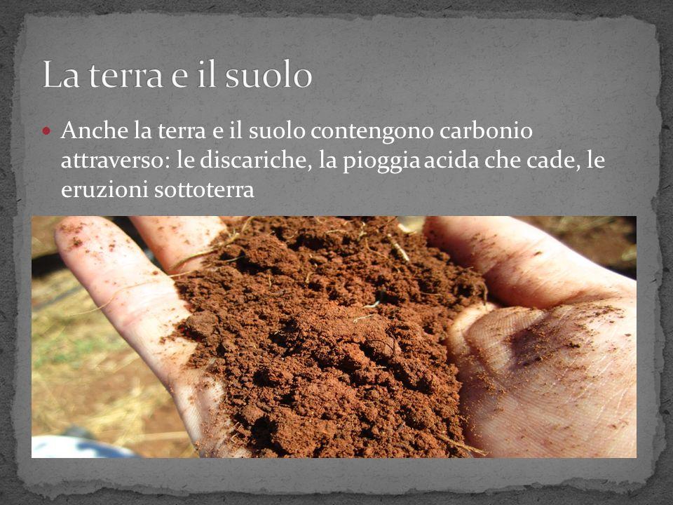 La terra e il suolo Anche la terra e il suolo contengono carbonio attraverso: le discariche, la pioggia acida che cade, le eruzioni sottoterra.