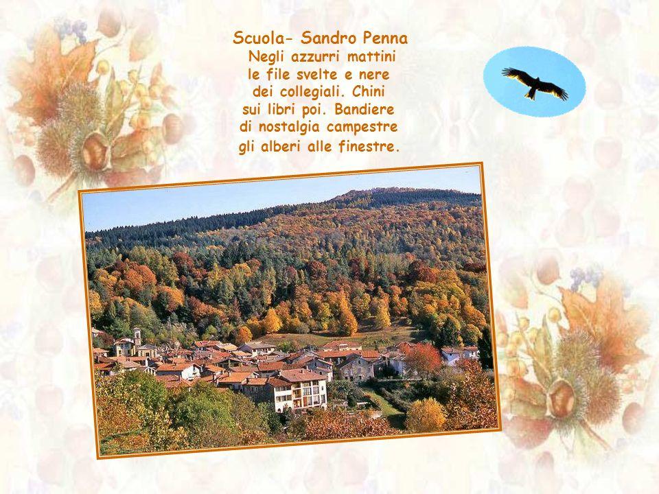 Scuola- Sandro Penna