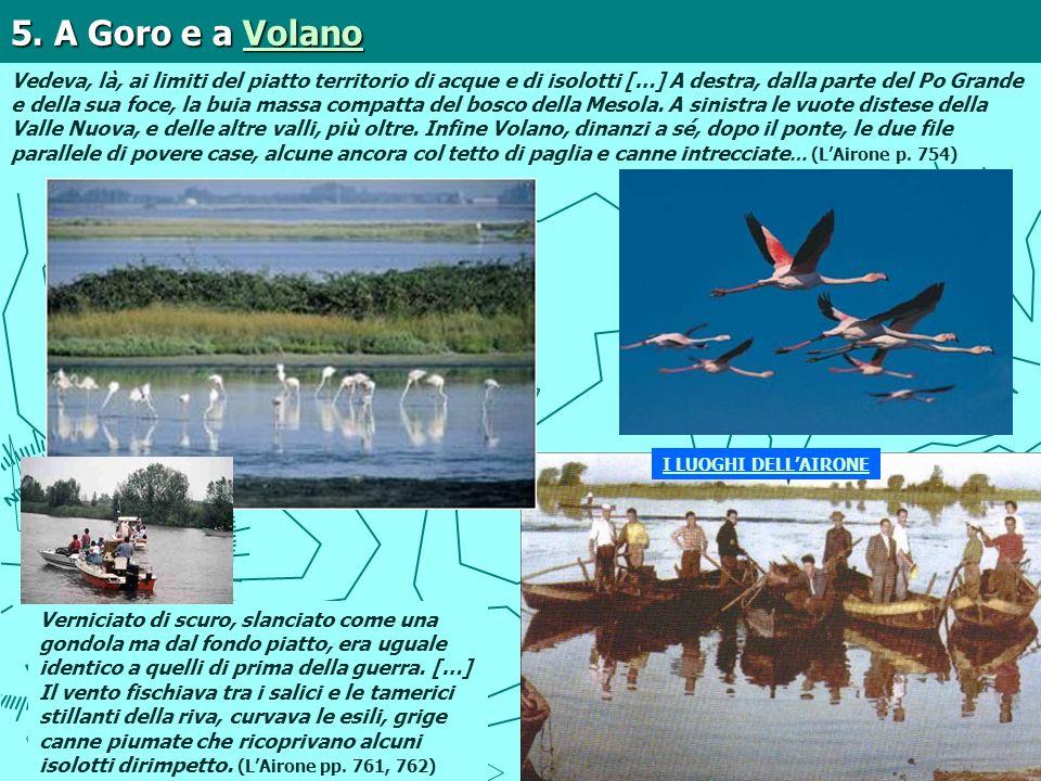 5. A Goro e a Volano