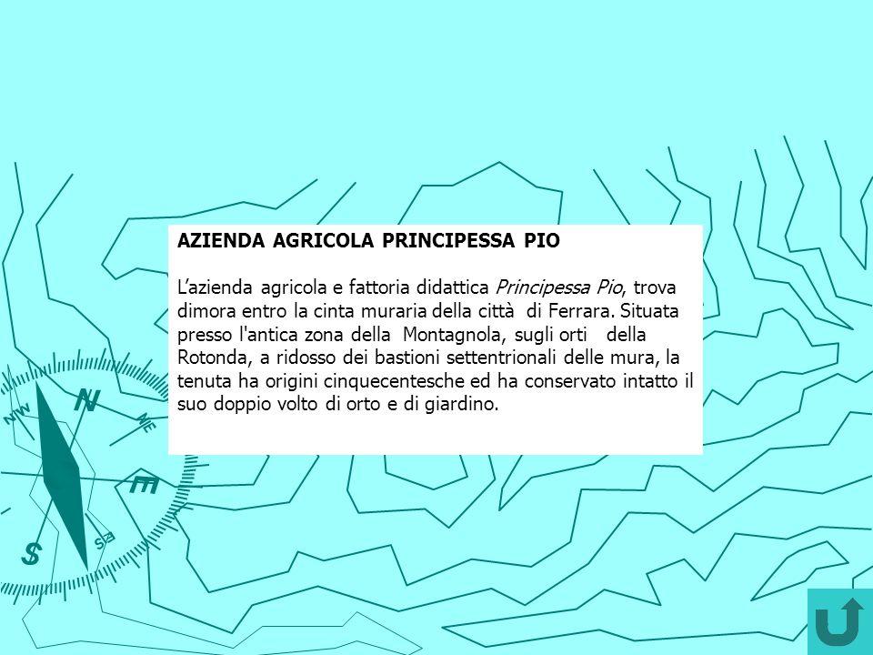 AZIENDA AGRICOLA PRINCIPESSA PIO
