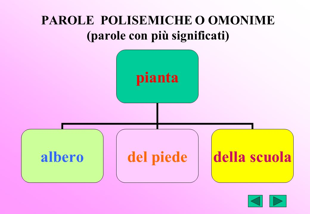 PAROLE POLISEMICHE O OMONIME (parole con più significati)