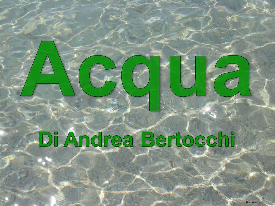 Acqua Di Andrea Bertocchi