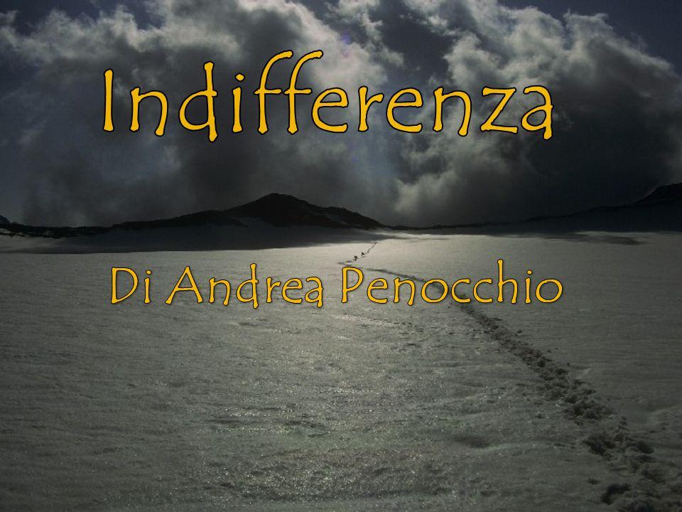 Indifferenza Di Andrea Penocchio