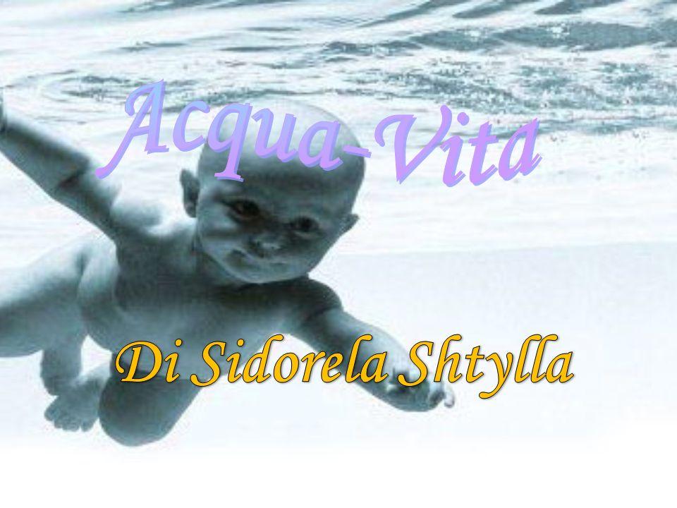 Acqua-Vita Di Sidorela Shtylla