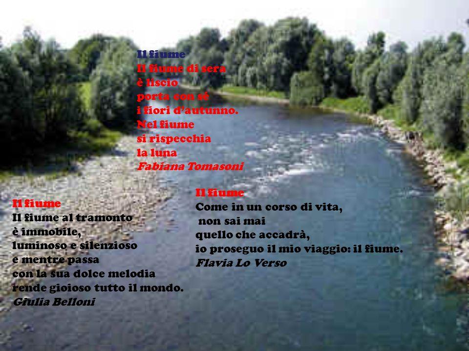 Il fiume Il fiume di sera. è liscio. porta con sé. i fiori d'autunno. Nel fiume. si rispecchia.