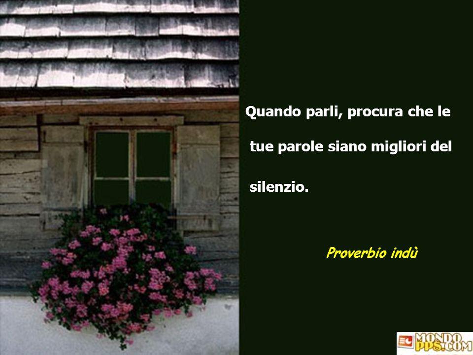 Quando parli, procura che le tue parole siano migliori del silenzio.