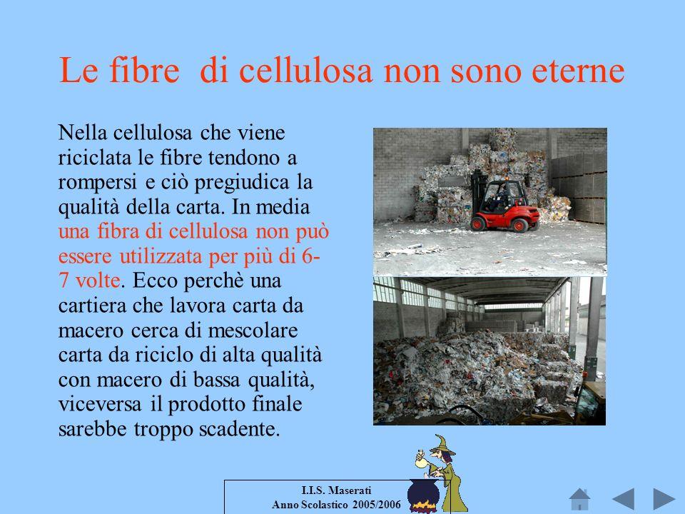 Le fibre di cellulosa non sono eterne